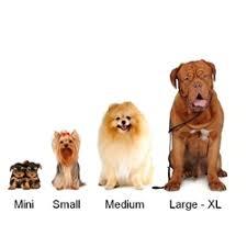 dog breed size chart orthopedic dog beds large breed dog beds find the right dog bed size