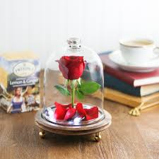 at the very least think of this enchanted rose cloche as a beautiful addition to any tea table