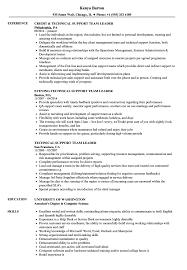 Resume Of Team Leader Technical Support Team Leader Resume Samples Velvet Jobs