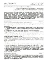Account Representative Sample Resume