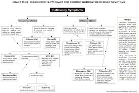 Plant Nutrient Deficiency Symptoms Chart Best Picture Of