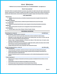 Making A Concise Credential Audit Resume Auditor Photo Examples