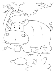 Hippo Coloring Pages Printable Johnrozumartcom