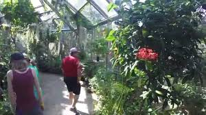 Butterfly Pavilion Omaha Henry Doorly Zoo - YouTube