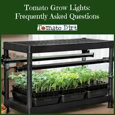 Tomato Grow Lights For Seedlings Faqs From Tomato Dirt