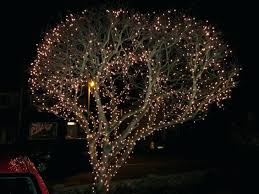 full image for outdoor led palm tree lighting fixtures attractive outdoor tree lights uk gallery a