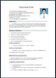 Professional Cv Format Download Professional Cv Template Download