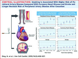 Atherosclerotic Disease Risk Persists Decades After Smoking