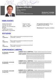 Curriculum Vitae Europass Sample Customer Service Resume