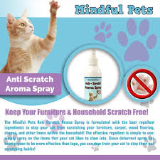 how to keep cats from scratching furniture luxury cat scratch deterrent spray natural training of how to keep cats from scratching furniture 354yakejmgrv3nluqvod8q