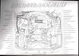 5 0 mustang alternator wiring diagram wiring library 1989 mustang 5 0 alternator wiring diagram 42 wiring