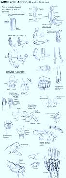 arms and hands tutorial by snigom on deviantart