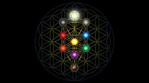 the tree of life derived from the flower of life