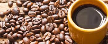 coffee beans cup. Brilliant Beans With Coffee Beans Cup Canterbury