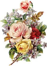 Vintage Floral Print Http Img Fotkiyandexru Get 6100 474073544e4