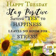 Tuesday Inspirational Quotes Adorable Happy Tuesday Happy Tuesday Quotes Quotes Pinterest Happy