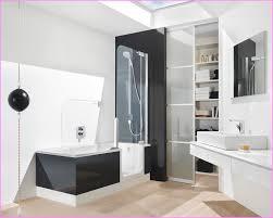 bathtubs idea inspiring walk in bathtub shower combo tubs beautiful design