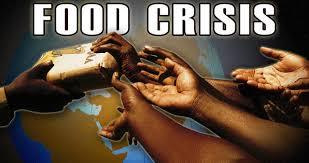 welcome to the blog playen bloguez com world food crisis world food crisis essay world food crisis 2008 world food