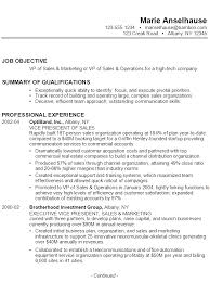 Example Resume VP Sales Marketing Operations High-Tech ...