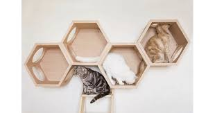 diffe types of cat wall shelves