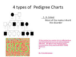 Muscular Dystrophy Pedigree Chart Answers Notes Pedigrees Ppt Video Online Download