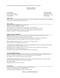 Resume Traditional Traditional Resume Sample Sample Professional Resume