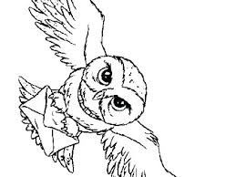 Printable Owl Pictures Owl Free Printable Owl Pictures To Color