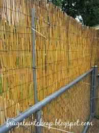 chain link fence bamboo slats.  Bamboo I Bamboo Slats For Chain Link Fence Attached The Zip Tie From Inside  Making Sure Wire A
