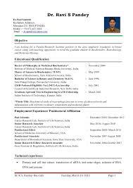 Fresher Lecturer Resume Sample