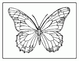 Then coloring pages of kitty becomes more famous. Butterfly Coloring Book Coloring Home