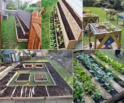 12 ideas to make a small vegetable garden