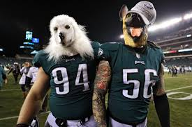 Image result for Philadelphia Eagles