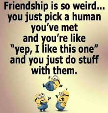 Silly Quotes About Friendship