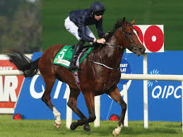 Image result for john f kennedy horse