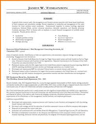 Internal Auditor Resume Objective Internal Resumet Executive Examples Auditor Application Template 84
