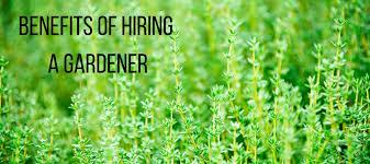 why hiring a hire a gardener 2018 garden