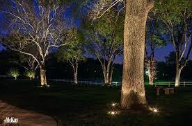 landscape lighting trees. Brilliant Trees Lighting Trees Unique Landscape 3  Artistic  Landscapes Low Voltage  Intended Landscape Lighting Trees D
