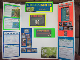 examples of poster board projects science poster board rome fontanacountryinn com