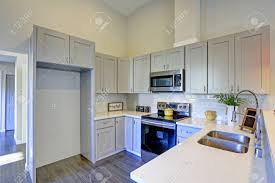 Light Grey Kitchen Room Interior With Vaulted Ceiling Grey