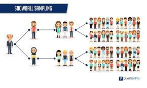 Snowball sampling explanation meaning of snowball sampling medical term. Snowball Sampling Definition Method Advantages And Disadvantages Questionpro