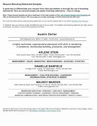 15 Elegant Copy And Paste Resume Templates Resume Sample