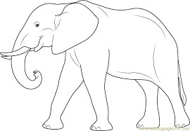 Small Picture Elephant Coloring Page Free Elephant Coloring Pages