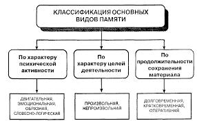 Урок по психологии на тему Память Виды памяти  hello html 60de20bd png