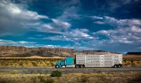 Amendment for another year of livestock ELD exemption makes it on to ...
