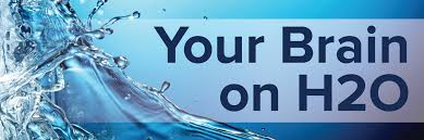 Your Brain on H2O | Student Health and Counseling Services