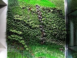 Small Picture Spains Largest Vertical Garden Cleans Indoor Office Air