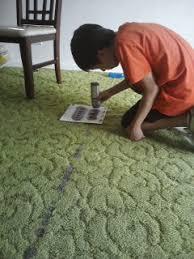 carpet paint. veccorating the carpet paint e