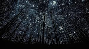 stars hd wallpapers 1080p. Plain 1080p 1920x1080 Photos Manipulation Forest Nigth Full Of Stars Backgrounds  Desktop Wallpapers High Definition Monitor Download Free Amazing For Stars Hd Wallpapers 1080p A