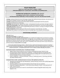 Vice President Resume Samples Executive Vice President Resume Samples Resume Templates Design
