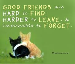 Quote To Friends About Friendship